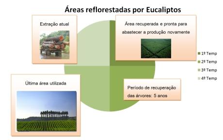 Sistema de rotatividade para autosustentabilidade na produção de papel